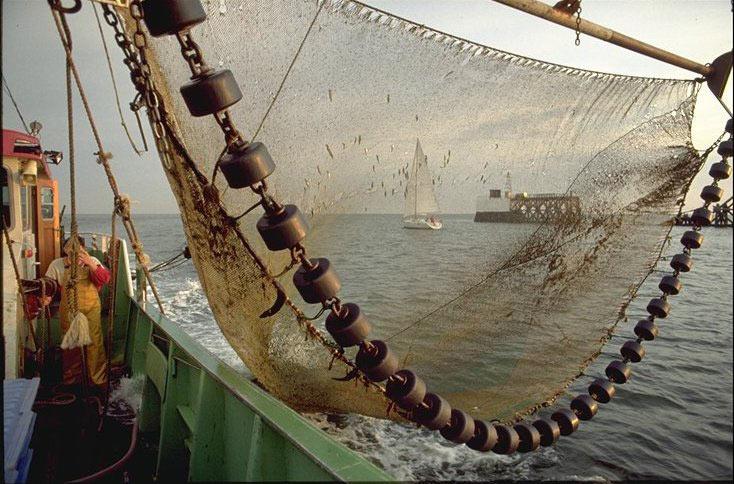 Chaîne de pêche